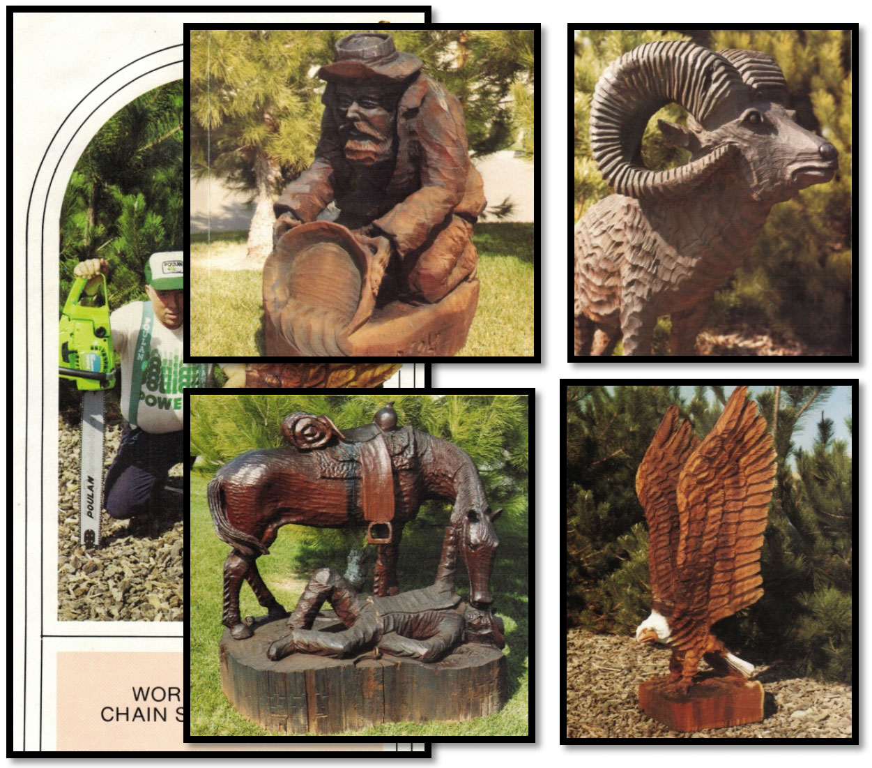 Chain Saw wood carvings - Don C.